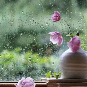 【大きいサイズのおすすめ】梅雨だってご機嫌に♪雨の日も快適なコーディネートL-6L